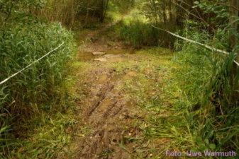 Laufstrecke: Furt am Grundbach - Uwe Warmuth
