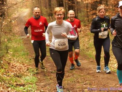 Czornebohlauf - Langer Trail nach 1 km